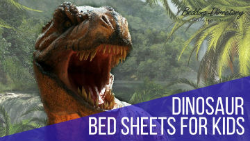 Kids Dinosaur Bedding
