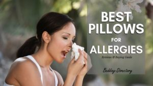 The 9 Best Hypoallergenic Pillows for 2020 | Ultimate Guide & Reviews